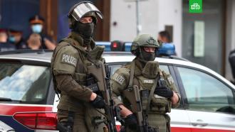 Глава МВД Австрии: атаку вВене устроил <nobr>террорист-одиночка</nobr>
