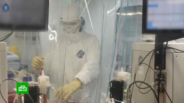 Израильский медцентр закупил российскую вакцину «СпутникV».Австралия, Великобритания, Греция, США, коронавирус, экономика и бизнес, эпидемия.НТВ.Ru: новости, видео, программы телеканала НТВ