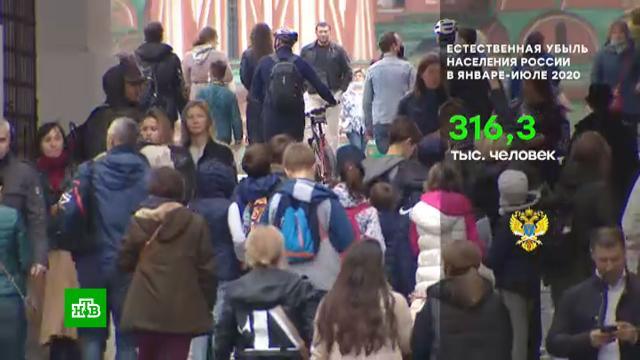 Счётная палата: в России выросла естественная убыль населения.демография, социология и статистика, Счётная палата.НТВ.Ru: новости, видео, программы телеканала НТВ