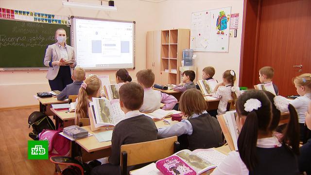 ВМоскве возобновил работу сервис «Учитель на замену».дети и подростки, коронавирус, образование, эпидемия.НТВ.Ru: новости, видео, программы телеканала НТВ