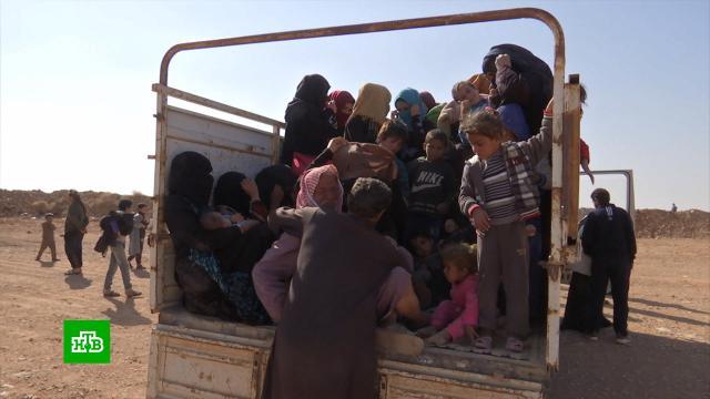 Из лагеря «Рукбан» вСирии спаслись больше 200человек.Сирия, войны и вооруженные конфликты, плен.НТВ.Ru: новости, видео, программы телеканала НТВ