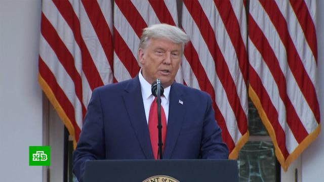 Трамп допустил, что покинет Белый дом.Байден, США, Трамп Дональд, выборы.НТВ.Ru: новости, видео, программы телеканала НТВ