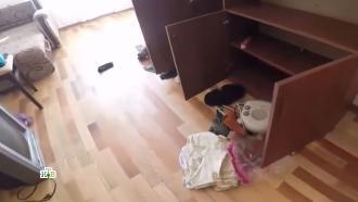 Фотоальбомы иеда втарелках: видео из брошенных вспешке домов вНагорном Карабахе