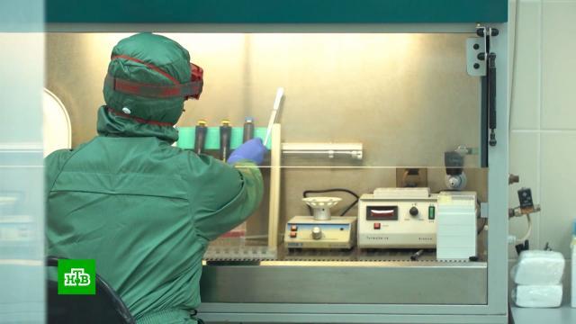 Пациентов смогут выписывать после одного отрицательного теста на COVID-19.болезни, коронавирус, Роспотребнадзор, эпидемия.НТВ.Ru: новости, видео, программы телеканала НТВ