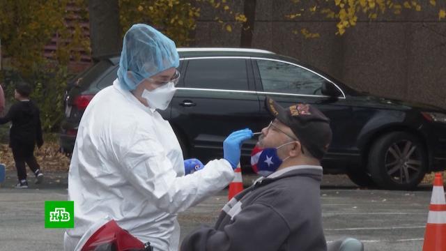 Число заражений коронавирусом в мире приблизилось к 55 млн.Европа, США, карантин, коронавирус, эпидемия.НТВ.Ru: новости, видео, программы телеканала НТВ