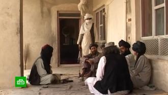 Австралия извинилась за убийства военнопленных в Афганистане