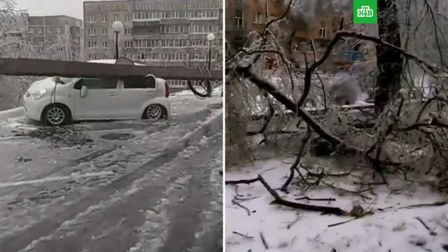 Ледяной дождь обесточил часть Владивостока.Владивосток, Приморье, аварии в ЖКХ, погодные аномалии, снег.НТВ.Ru: новости, видео, программы телеканала НТВ
