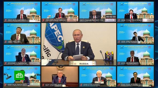 Путин: десятки миллионов рискуют оказаться за чертой бедности из-за COVID-19.АТЭС, Путин, коронавирус, экономика и бизнес.НТВ.Ru: новости, видео, программы телеканала НТВ