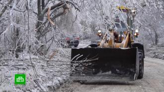 После ледяного дождя Приморский край оказался вснежном плену