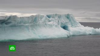 Форум «Дни Арктики иАнтарктики вМоскве» собрал научных работников, бизнесменов иэкологов