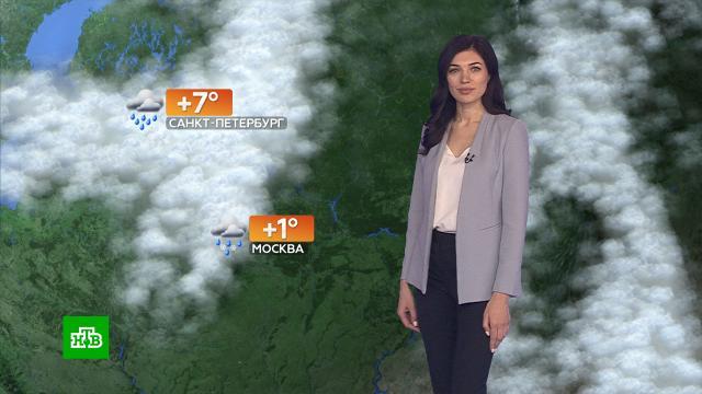 Прогноз погоды на 26ноября.погода, прогноз погоды.НТВ.Ru: новости, видео, программы телеканала НТВ