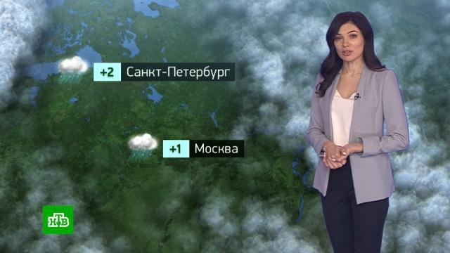 Утренний прогноз погоды на 25ноября.погода, прогноз погоды.НТВ.Ru: новости, видео, программы телеканала НТВ