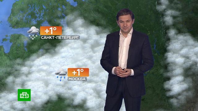 Прогноз погоды на 27ноября.погода, прогноз погоды.НТВ.Ru: новости, видео, программы телеканала НТВ
