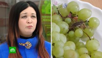 Укушенная скорпионом женщина хочет отсудить 500 тысяч рублей