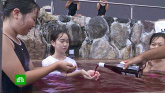 Японский курорт искупал клиентов вмолодом вине