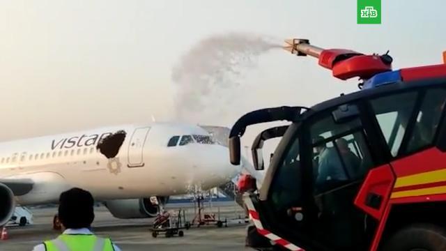 Дикие пчелы захватили два самолета вИндии.Индия, авиационные катастрофы и происшествия, аэропорты, пчелы, самолеты.НТВ.Ru: новости, видео, программы телеканала НТВ