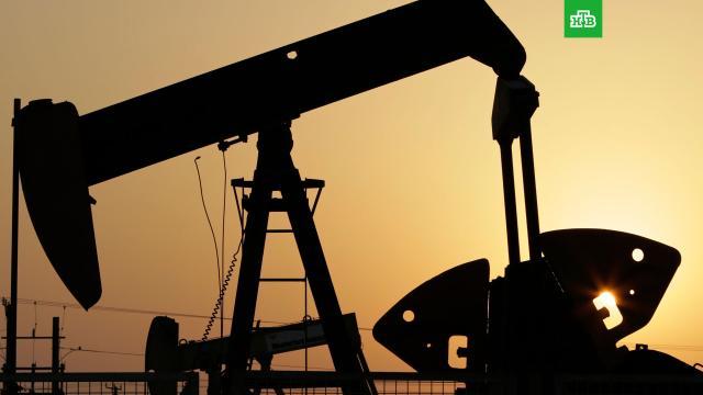 Страны ОПЕК+ договорились сянваря увеличить добычу нефти.ОПЕК, нефть, экономика и бизнес.НТВ.Ru: новости, видео, программы телеканала НТВ