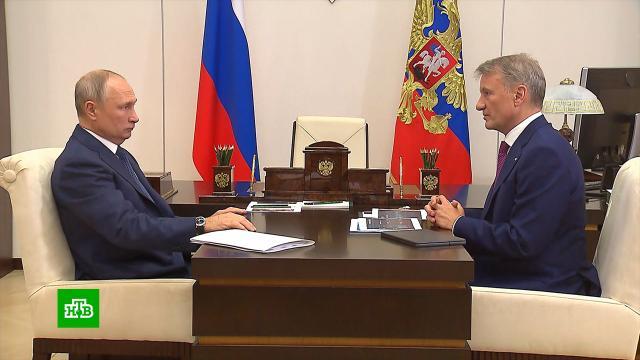 Путин отметил рост экономической активности россиян.Греф, Путин, Сбербанк, экономика и бизнес.НТВ.Ru: новости, видео, программы телеканала НТВ