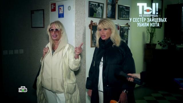 Сестры Зайцевы добиваются увольнения врача, которую винят в смерти их кота.артисты, животные, знаменитости, шоу-бизнес, эксклюзив.НТВ.Ru: новости, видео, программы телеканала НТВ
