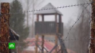 Чем на самом деле является реконструкция финского концлагеря в карельской деревне