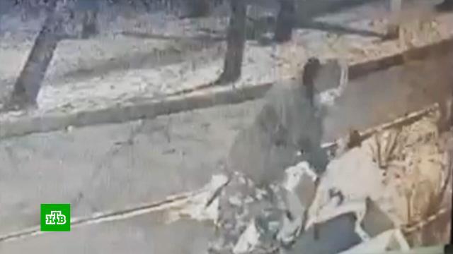 Родители раненой школьницы выгораживают подстрелившего ее полицейского.МВД, Москва, алкоголь, дети и подростки, полиция, стрельба, суды.НТВ.Ru: новости, видео, программы телеканала НТВ