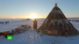 Чем может удивить туристов Арктика
