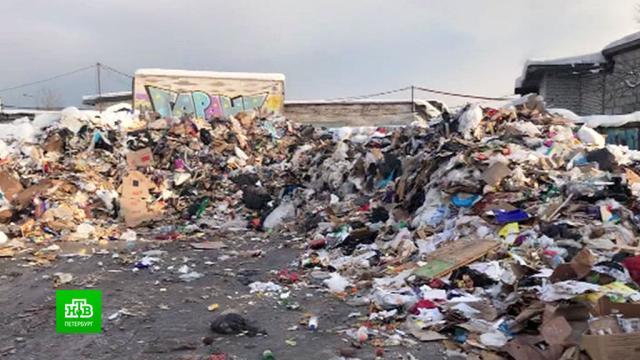 Территорию склада на юге Питера превратили в гниющую свалку.Санкт-Петербург, мусор, экология.НТВ.Ru: новости, видео, программы телеканала НТВ