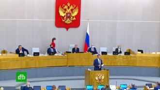 ВГосдуме поддержали закон омитингах