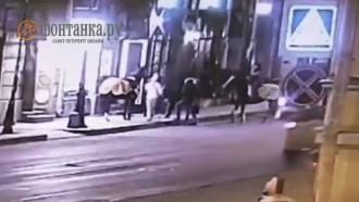 Пьяный петербуржец хотел поцеловать лошадь иостался без носа