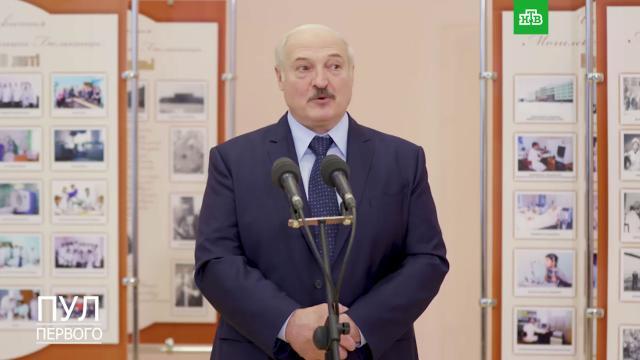 Лукашенко объяснил, почему больше не заразится коронавирусом.Белоруссия, Лукашенко, больницы, здоровье, коронавирус, эпидемия.НТВ.Ru: новости, видео, программы телеканала НТВ