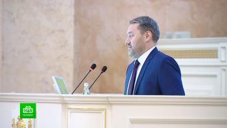 Вице-губернатора Петербурга раскритиковали за травлю муниципальных депутатов