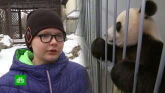 Путин исполнил мечту мальчика встретиться с пандой