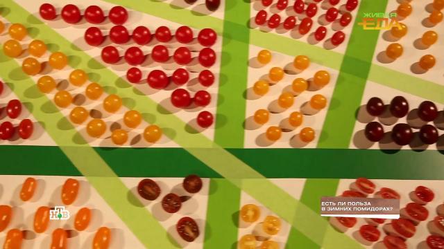 Естьли польза взимних помидорах?НТВ.Ru: новости, видео, программы телеканала НТВ