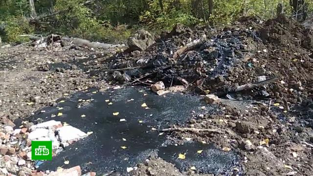 Сотни тонн мазута из старой советской трубы годами отравляют почву вСамарской области.Самарская область, разлив нефтепродуктов и химикатов, экология.НТВ.Ru: новости, видео, программы телеканала НТВ