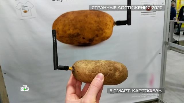 Антивирусная кепка исмарт-картофель: странные изобретения 2020года.НТВ.Ru: новости, видео, программы телеканала НТВ