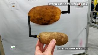 Антивирусная кепка и<nobr>смарт-картофель</nobr>: странные изобретения 2020года