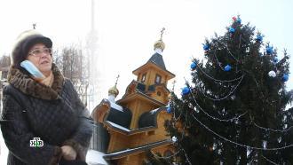 Нижегородская пенсионерка спасла от тюрьмы спилившего ее елку чиновника.НТВ.Ru: новости, видео, программы телеканала НТВ