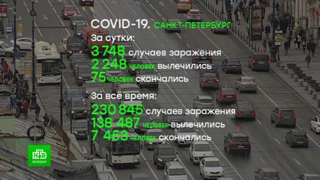 «Ленэкспо» иВоенно-медицинская академия увеличивают количество мест для больных коронавирусом.Санкт-Петербург, артисты, больницы, коронавирус, эпидемия.НТВ.Ru: новости, видео, программы телеканала НТВ