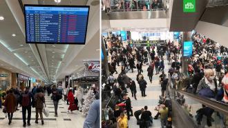 Пассажиры застряли в Домодедово из-за ледяного дождя