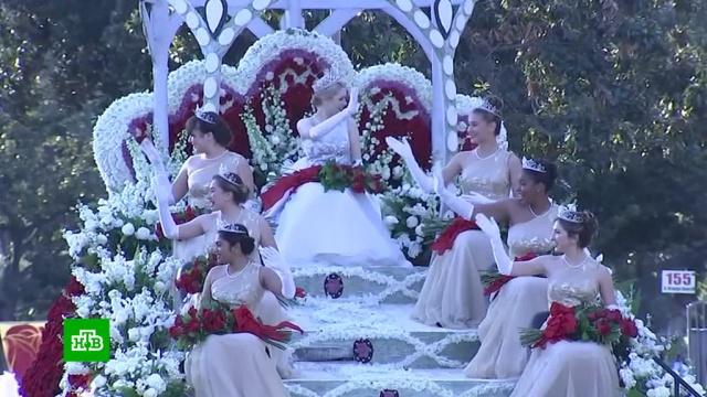ВСША вчесть Нового года устроили парад цветов изаплыв моржей.Новый год, США, торжества и праздники, цветы.НТВ.Ru: новости, видео, программы телеканала НТВ