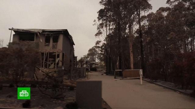«Неописуемый ад»: пожары вАвстралии уничтожают целые города.Австралия, лесные пожары, стихийные бедствия.НТВ.Ru: новости, видео, программы телеканала НТВ