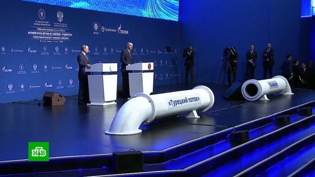 Путин иЭрдоган запустили «Турецкий поток».Путин, Турция, газ, газопровод, дипломатия, переговоры.НТВ.Ru: новости, видео, программы телеканала НТВ