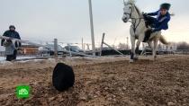 КСК «Донские кони» получил миллионы на ремонт и развитие.В Липецкой области воспитанники детского конного клуба готовятся к чемпионату мира по спортивной джигитовке. Расположенный в Лебедяни КСК «Донские кони» был на грани закрытия, не хватало денег на работу и даже на корм лошадям. При этом воспитанники на чистом энтузиазме, в условиях тяжелых не только для людей, но и для лошадей, занимали высокие места на соревнованиях. Последний турнир принес им не только победу, но и внимание благотворителей.Липецкая область, животные, кони и конный спорт.НТВ.Ru: новости, видео, программы телеканала НТВ