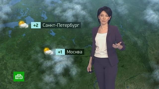 Утренний прогноз погоды на 14 января.погода, прогноз погоды.НТВ.Ru: новости, видео, программы телеканала НТВ