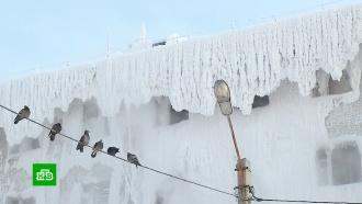 Снежное царство: СК проверит обледенелое общежитие в Иркутске