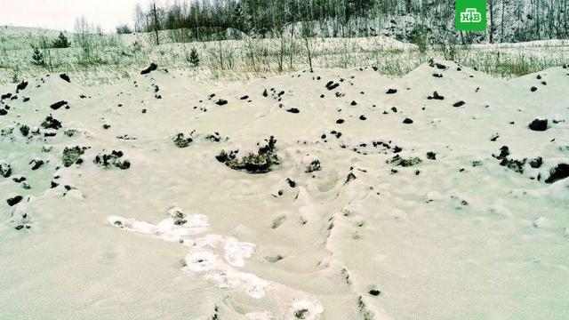 Челябинцев напугал зеленый снег.Челябинск, зима, снег, экология.НТВ.Ru: новости, видео, программы телеканала НТВ