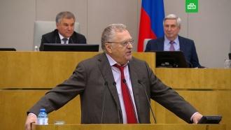 Жириновский посоветовал Мишустину «никогда не говорить отрицательно»