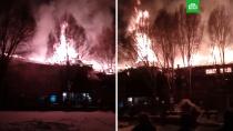 В Самаре вспыхнул ресторан с посетителями: видео.В Самаре огонь уничтожил ресторан. Площадь пожара составила 900 квадратных метров.пожары, рестораны и кафе, Самара.НТВ.Ru: новости, видео, программы телеканала НТВ