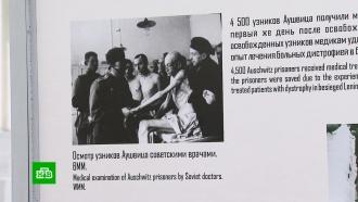 Неделя памяти жертв холокоста началась свыставки вМоскве