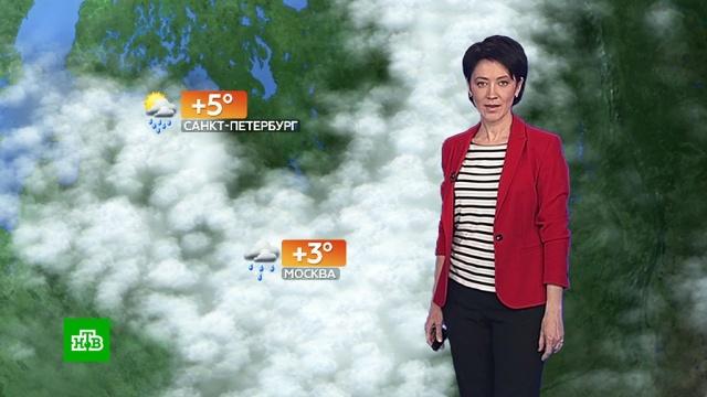 Прогноз погоды на 21 января.погода, прогноз погоды.НТВ.Ru: новости, видео, программы телеканала НТВ
